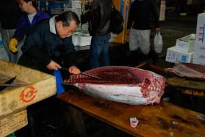 Tokio-Fishmarket-04