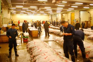 Tokio-Fishmarket-14