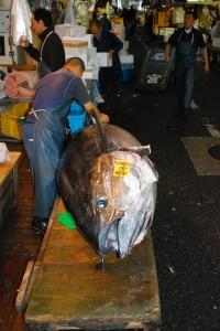 Tokio-Fishmarket-25