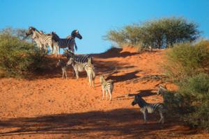 Namibia-035