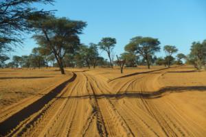 Namibia-043
