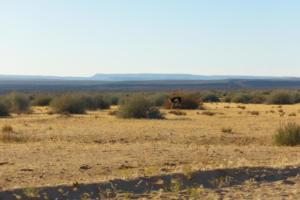 Namibia-092