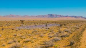 Namibia-108