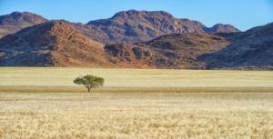 Namibia-155