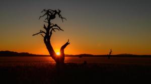 Namibia-169
