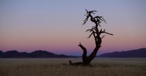 Namibia-172
