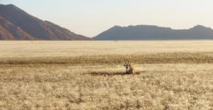 Namibia-192