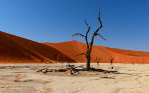 Namibia-214