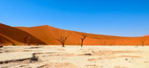Namibia-216