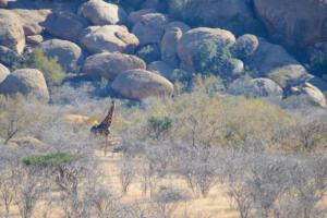 Namibia-268