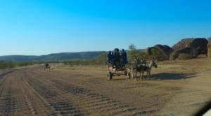 Namibia-280