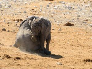 Namibia-359