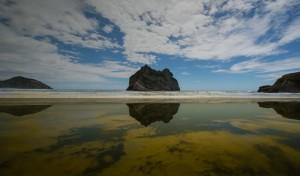 New Zealand-31