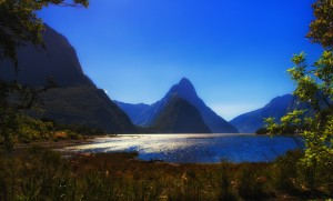 New Zealand-51