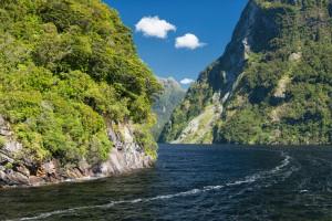 New Zealand-53