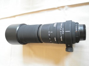Nikon-090
